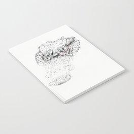 The Gator Notebook