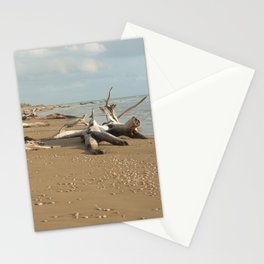Natural reserve, south of Sicily Stationery Cards