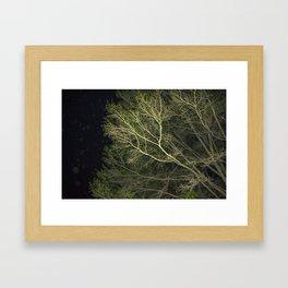 En-tree-ging Framed Art Print
