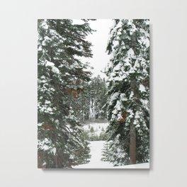Tahoe 0377 Metal Print