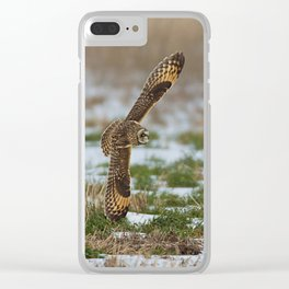 BIG WINGS Short Eared Owl Clear iPhone Case