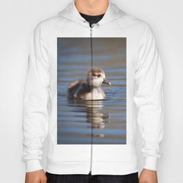 Duckling on the pond Hoody