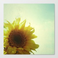 sunflower Canvas Prints featuring Sunflower by Cassia Beck