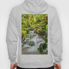 Rainforest Creek Hoody