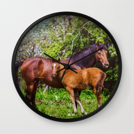 Mother horse with little foal Wall Clock