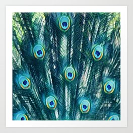 Painted Peacock Feathers Art Print