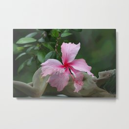 Hybiscus Nude Metal Print