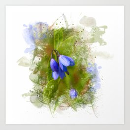 Pretty bluebells on white Art Print