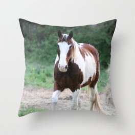 Tennessee Painted Pony Throw Pillow