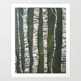 Birchwood Forest Art Print
