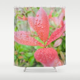 Fifth Month Photinia II Shower Curtain