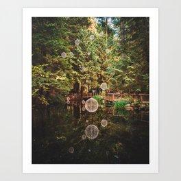 Balls of Light in Forest Art Print