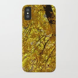 Fall on fire iPhone Case