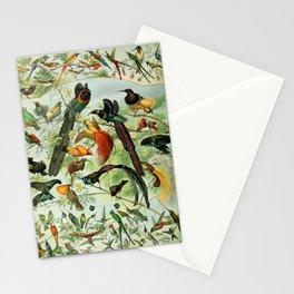 """Adolphe Millot """"Oiseaux"""" Tropical Birds Nouveau Larousse 1905 Stationery Cards"""