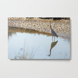 Waiting for the fish Metal Print