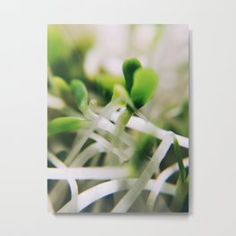 Sprout Me Metal Print