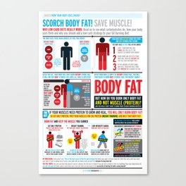 Basics: How your body uses energy  Canvas Print