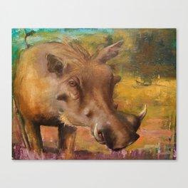 Common Warthog (Phacochoerus africanus)  Canvas Print