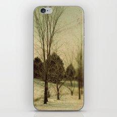 December Trees iPhone & iPod Skin