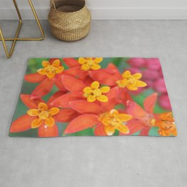 Succulent Red and Yellow Flower II Rug