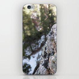 Crystalline Moss iPhone Skin