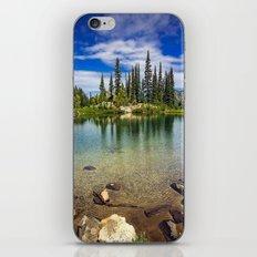 Mountain Lake in the Mt Rainier National Park iPhone & iPod Skin