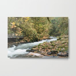 Cedar Creek Metal Print