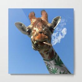 giraffe 4 Metal Print