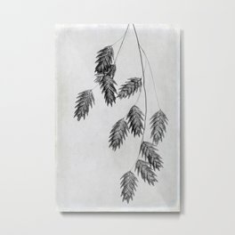 oat grass in black and white Metal Print