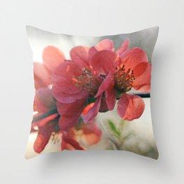 Evening Blush Throw Pillow