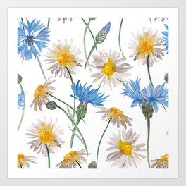 Chamomiles and blue cornflowers Art Print