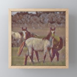 Feral Horses II Framed Mini Art Print