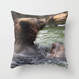 A Great Day to Play in the Water with a LOG Throw Pillow