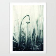 Köpfchen Art Print