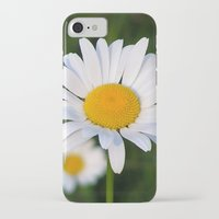 daisies iPhone & iPod Cases featuring Daisies by Rose Etiennette