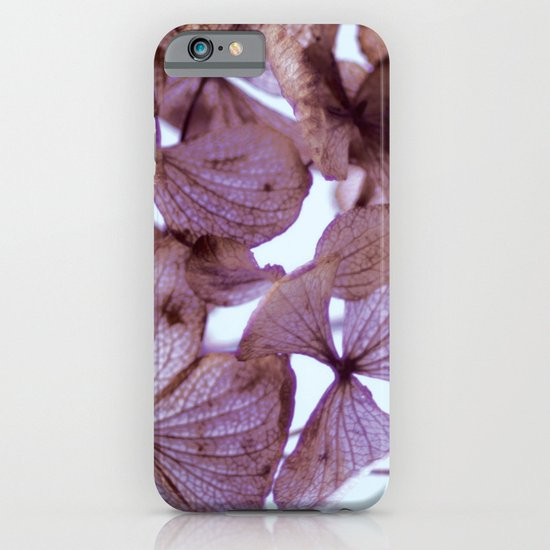 Hydrangeas iPhone & iPod Case