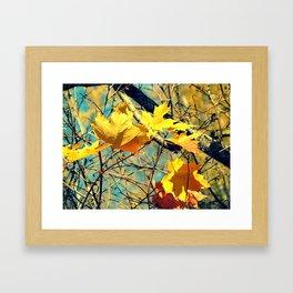 Famous fall 28 Framed Art Print