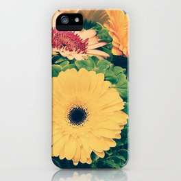 Gerberas 2.1 iPhone Case