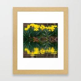 YELLOW DAFFODILS WATER REFLECTION PATTERN Framed Art Print
