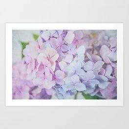 Bloomin' Fabulous Hydrangeas Art Print