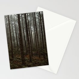 Foggy Mossy Forest in Madeira Stationery Cards