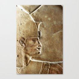 Egyptian Vibes Canvas Print