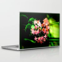 cacti Laptop & iPad Skins featuring Cacti by Chris' Landscape Images & Designs