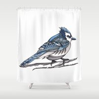 jay fleck Shower Curtains featuring Blue Jay by DaisyOdd