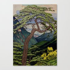 The Downwards Climbing Canvas Print