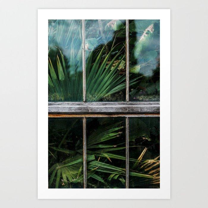 Botanical window Art Print