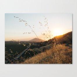 Fresno Sunset Canvas Print