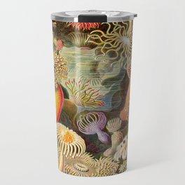 Haeckel Illustration - Marine Life Travel Mug