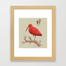 Who are you calling a flamingo? Framed Art Print