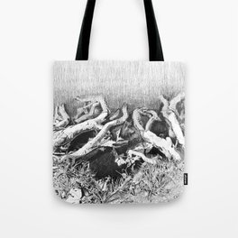 Transitions in nature part 2 Tote Bag